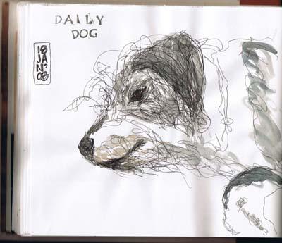 dailydog011808.jpg