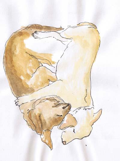 puppylove012008.jpg