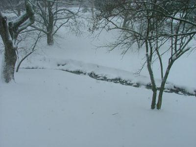 blizzard08.jpg