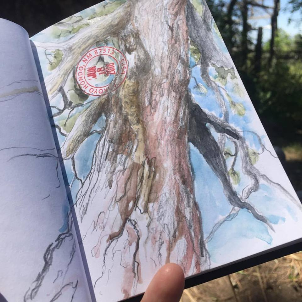lawrence-tree