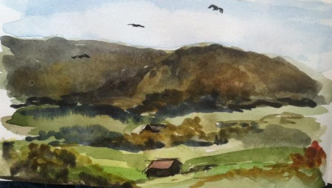 Amy bogard sketch of buzzards roost