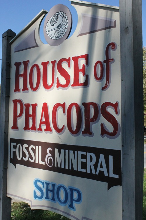 House of Phacops