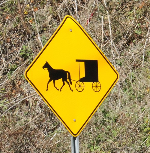 Watching out for our Amish driving friends on the road