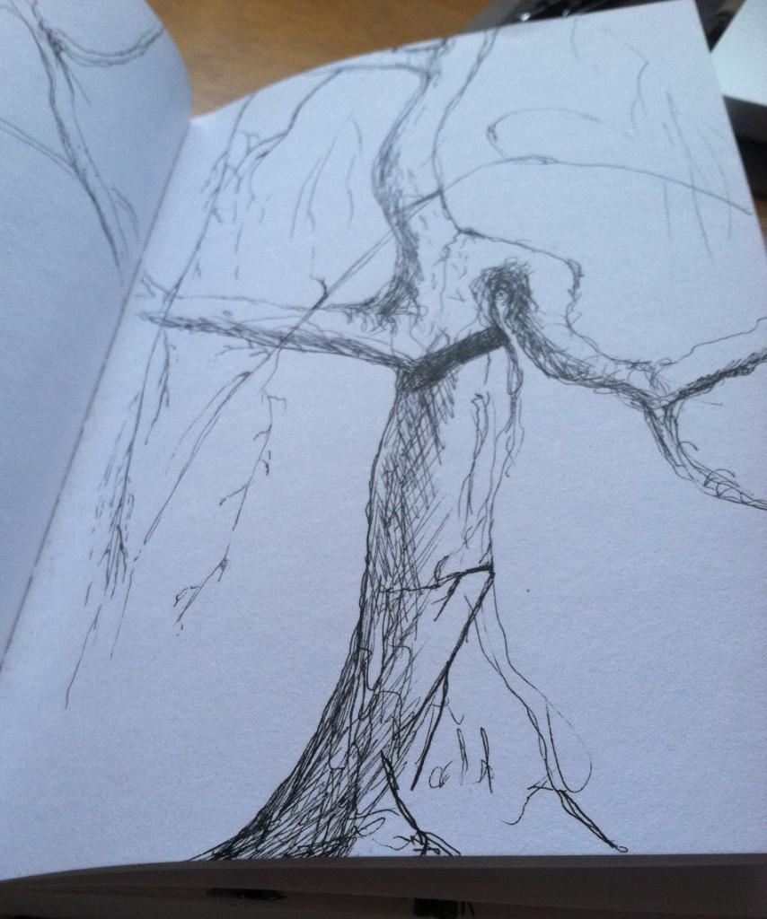 esmes tree