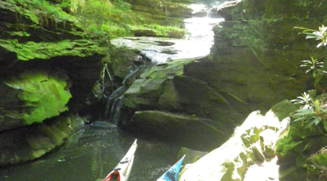 Paddling the nooks and crannies of Grayson