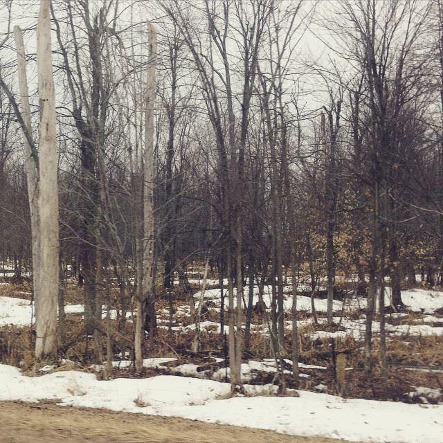 winter still up north