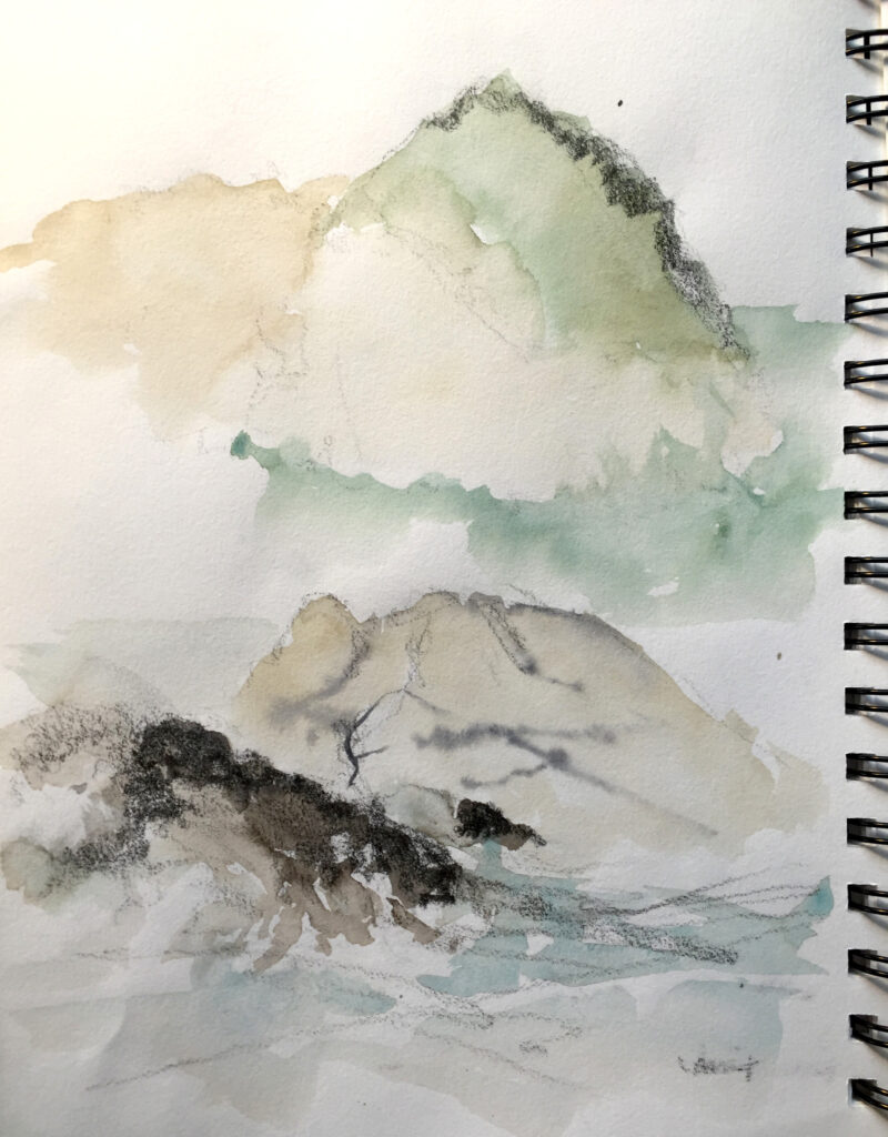 point lobos sketches