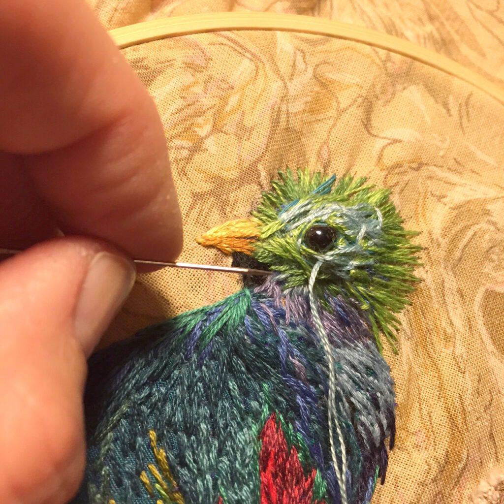 quetzal 9