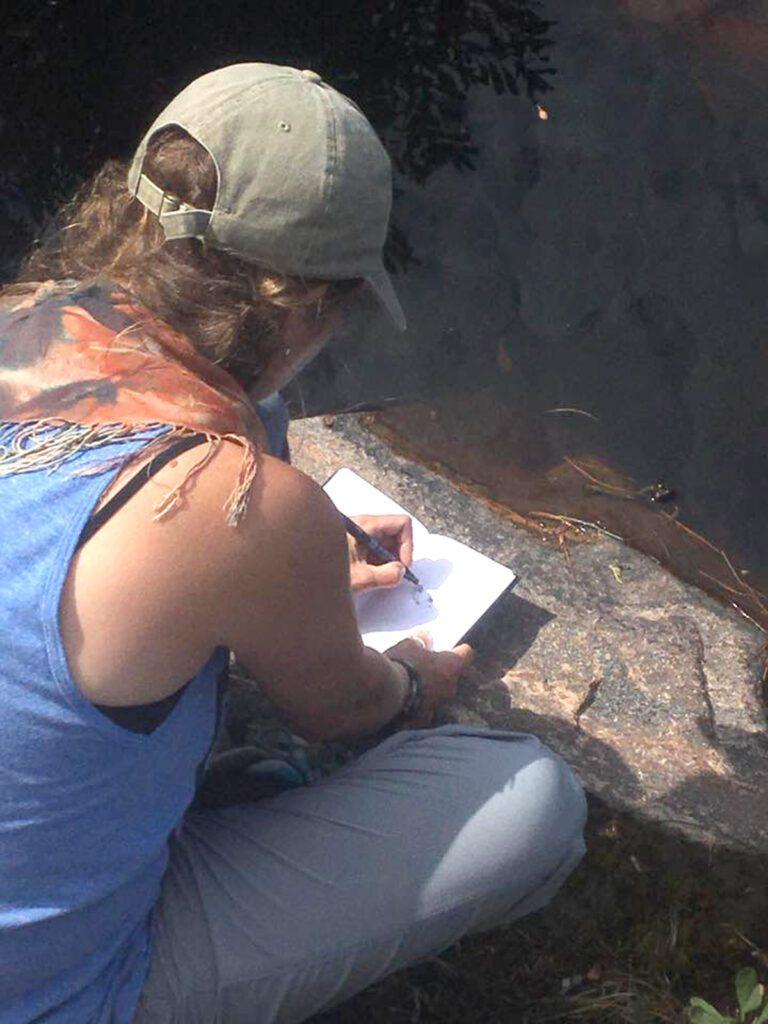 sketching mr. frog