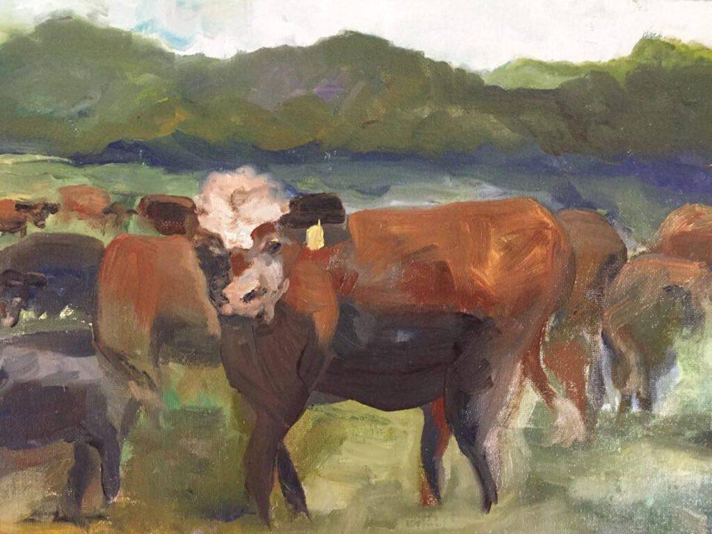 bogard-cows-1